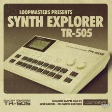 Loopmasters Synth Explorer TR505 MULTiFORMAT [1 CD]